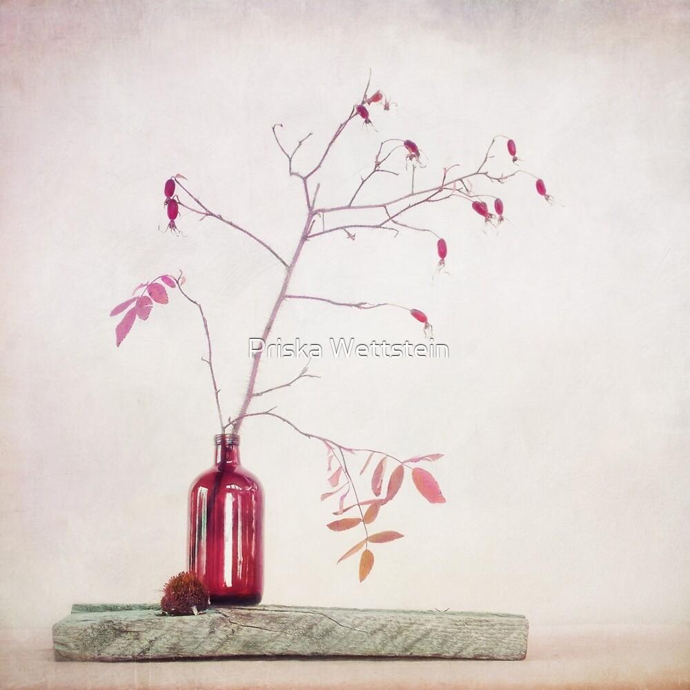 Wild rosehips in a bottle by Priska Wettstein