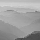 The Subtlety of Nature by Vikram Franklin