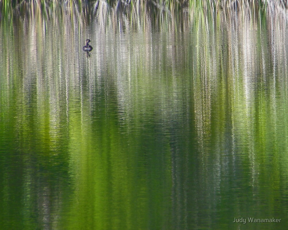 Sitting duck by Judy Wanamaker