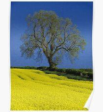 The Oak Tree Poster