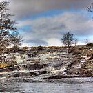 Gushing Waters by Lynne Morris