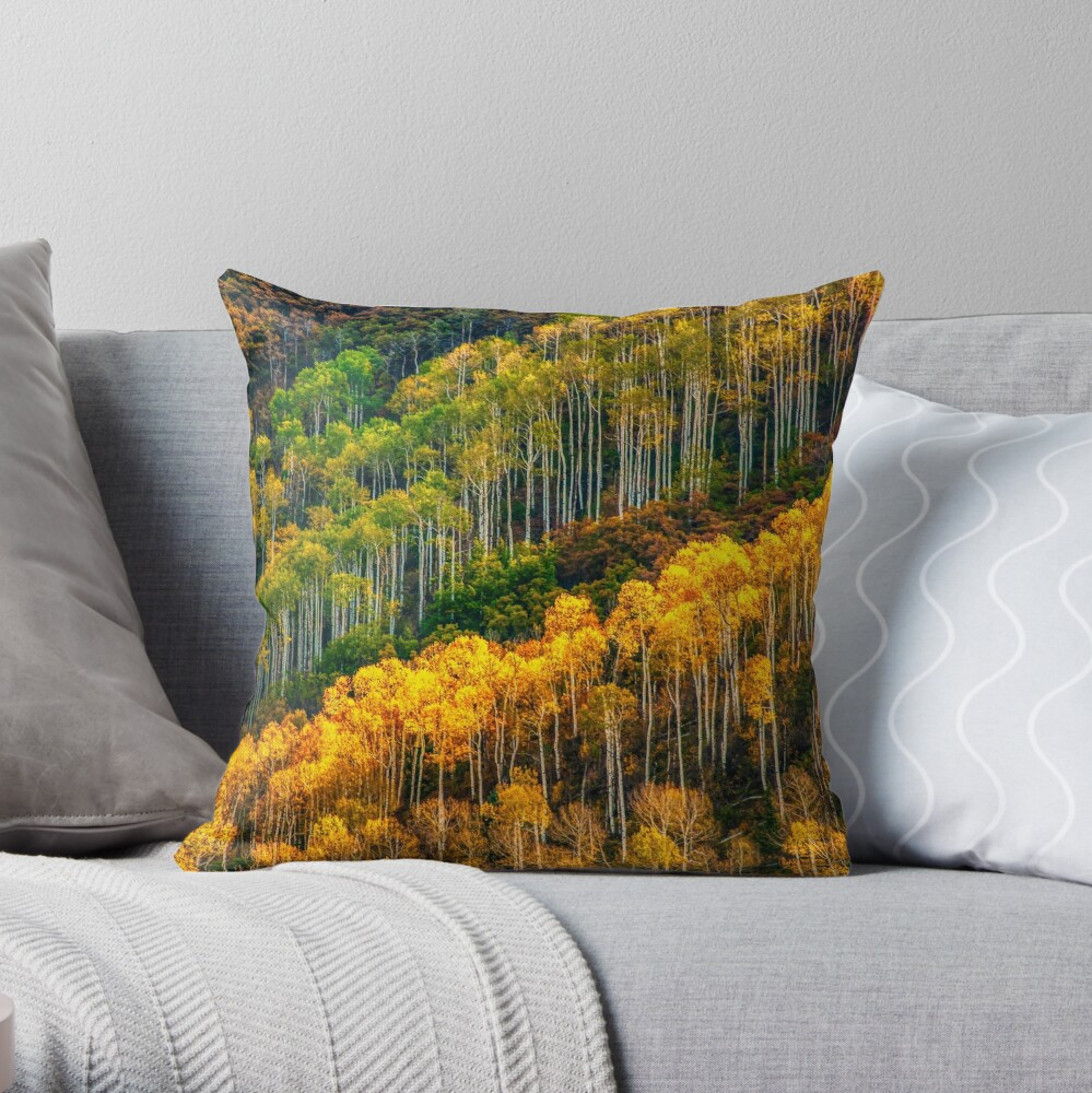 Aspen Soldiers Throw Pillow