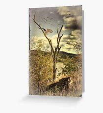 Owl's Roost Greeting Card
