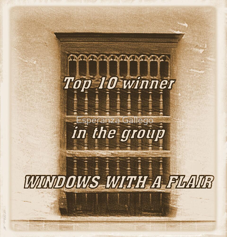 BANNER FOR WINDOWS by Esperanza Gallego