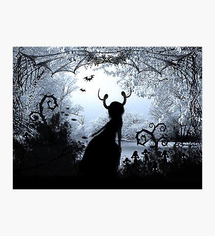 Snow Queen Photographic Print