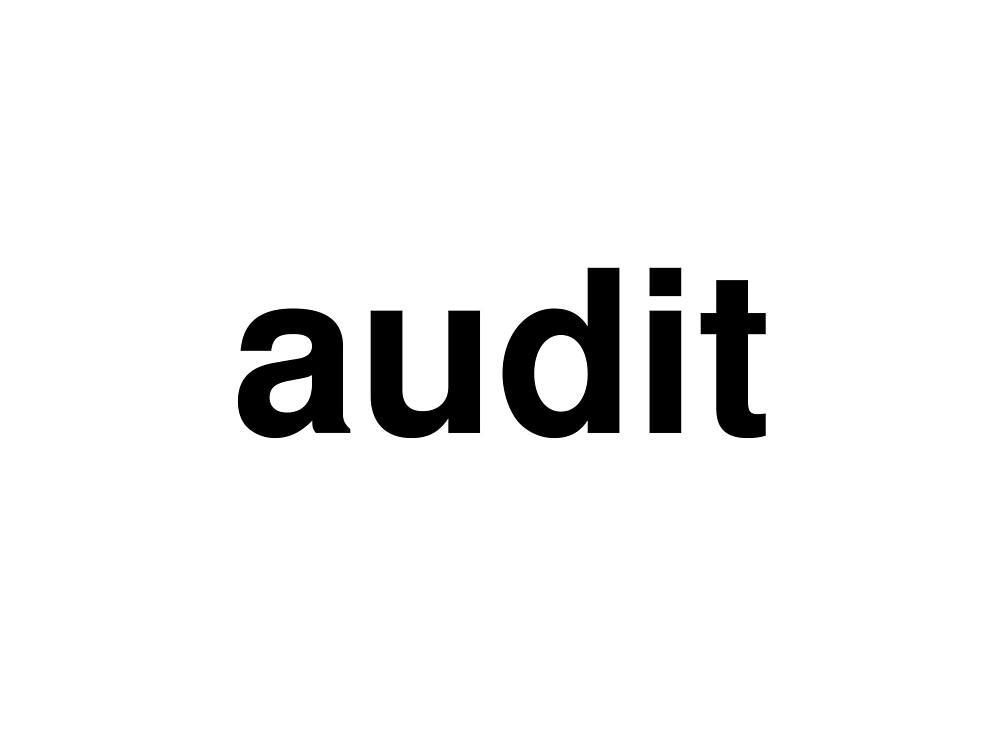 audit by ninov94