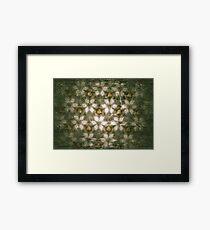 Petals. Framed Print