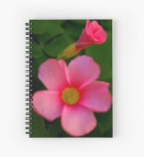 Open and Closed Spiral Notebook