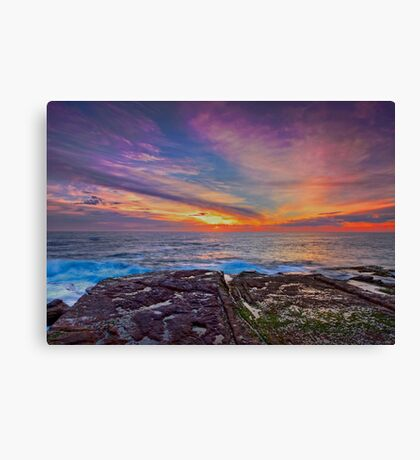 Colours of the Rainbow Canvas Print