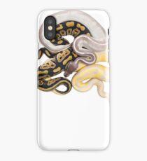 Python regius - Ball Python iPhone Case/Skin