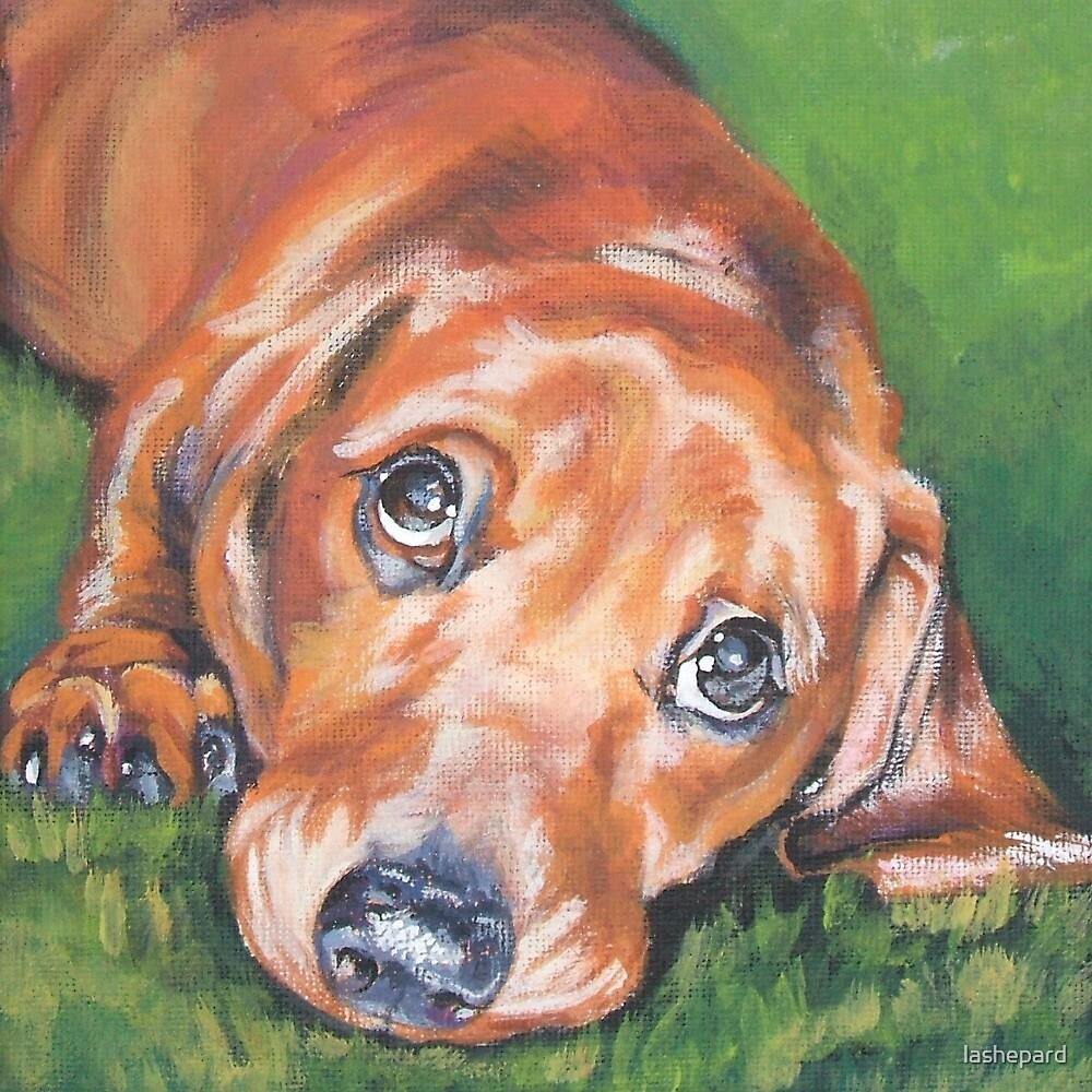 Dachshund Fine Art Painting by lashepard