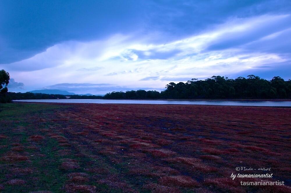 TASMAN PENINSULA ~ Lagoon on the Way to Lagoon Beach by tasmanianartist by tasmanianartist
