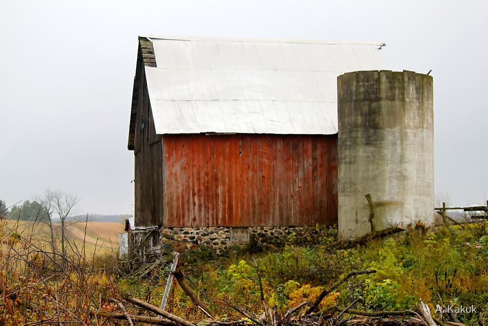 Red Barn on the Farm by A. Kakuk