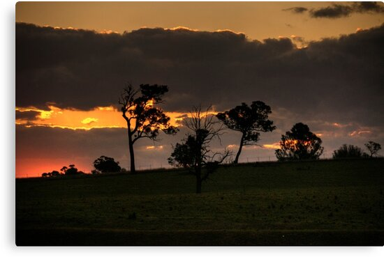 Sunset At Badgery's Creek (2) by Josette Halls