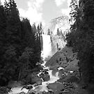 Vernal Falls Black & White by Crystal Fobare