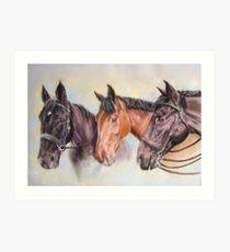 Robinsons' horses Art Print