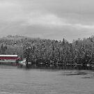 Red Covered Bridge by Bill Maynard