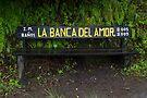 La Banca Del Amor by Walter Quirtmair