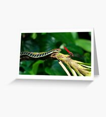 watch out there's a snake about Greeting Card