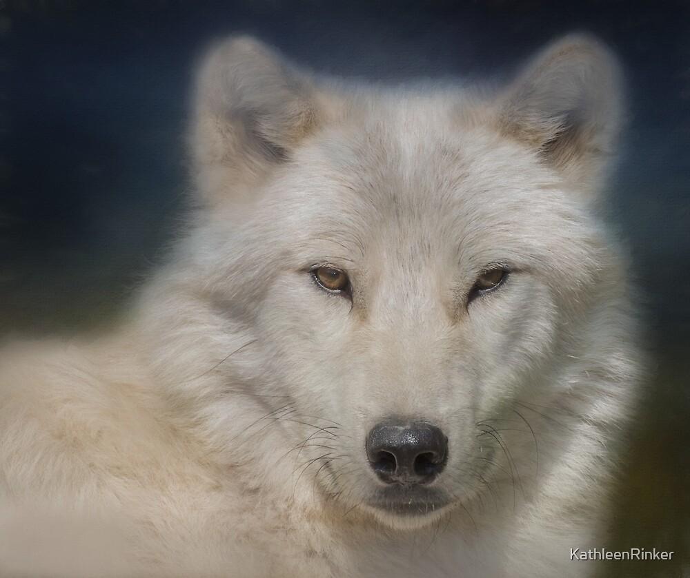 Wolf by KathleenRinker