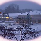 My View this morning.... 1-12-2011 by Larry Llewellyn