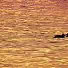 Sentados frente al lago by Constanza Barnier