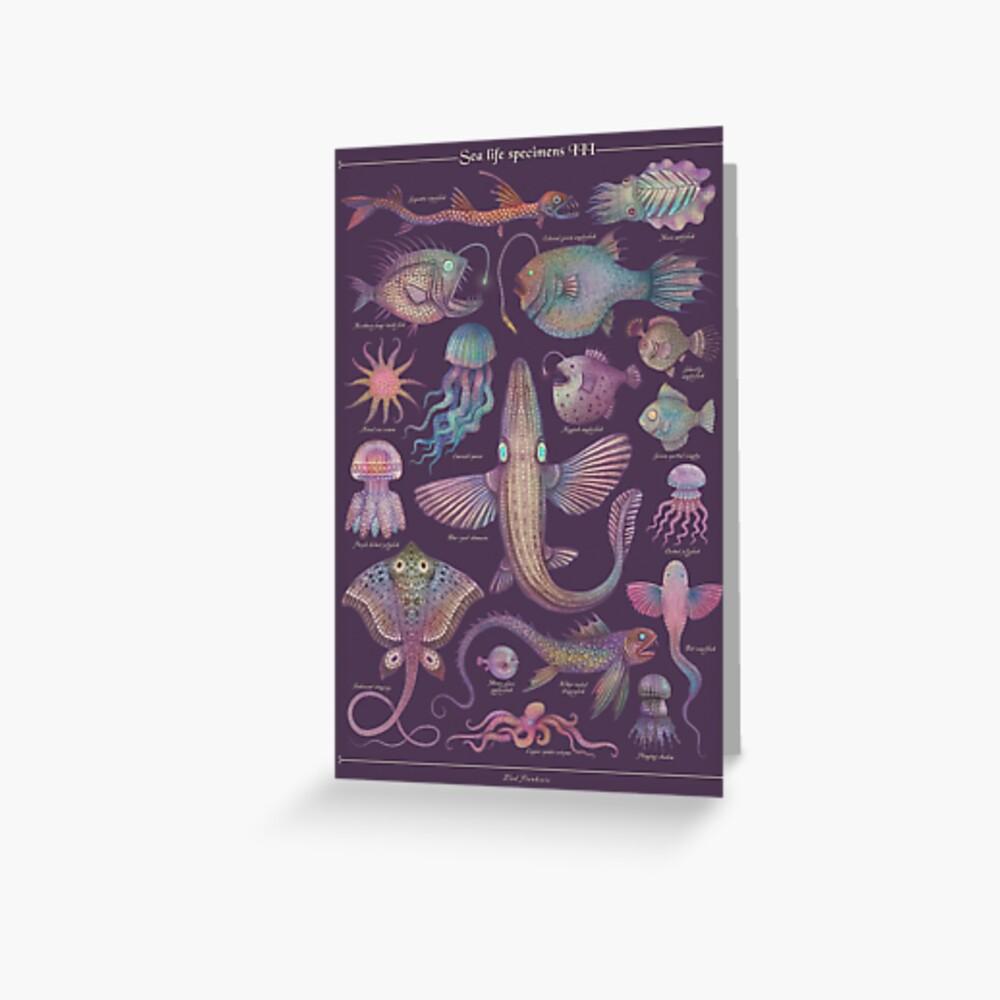 Sea life specimens III Greeting Card