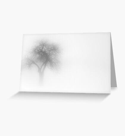 One Tree in Fog Greeting Card