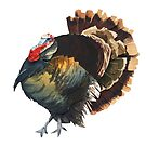 The Big Turkey by SarahSnippets