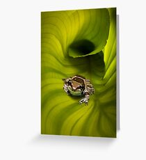 Escaping the Hosta Greeting Card
