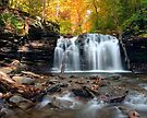 Autumn At Wyandot From The Waters Of Kitchen Creek by Gene Walls