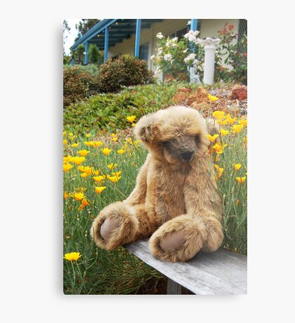Big Teddy Loves The Outdoors # 2 Metal Print