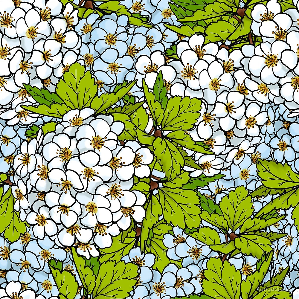 White Flower Blossoms Pattern by tanyadraws