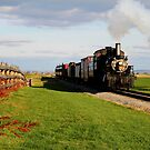 Strasburg Rail by Sharon Batdorf