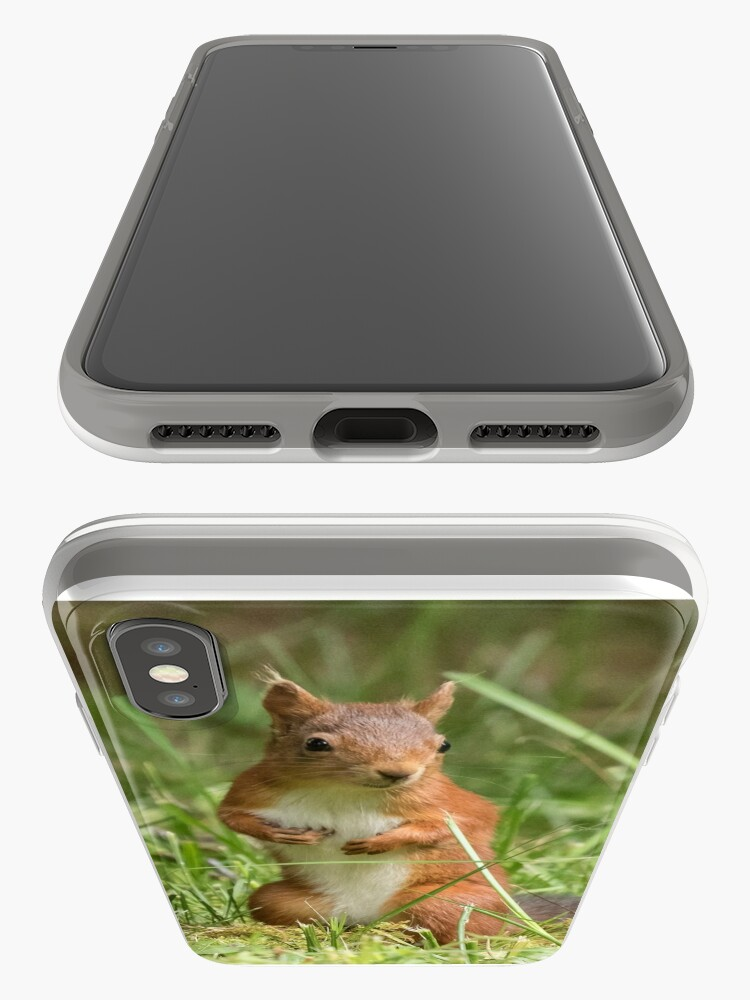 Alternate view of Squirrel in the grass iPhone Case & Cover