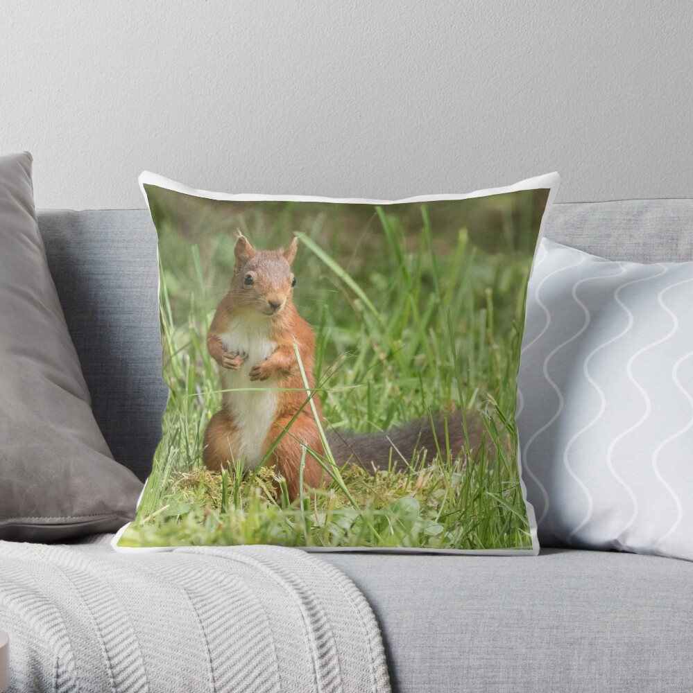 Squirrel in the grass Throw Pillow