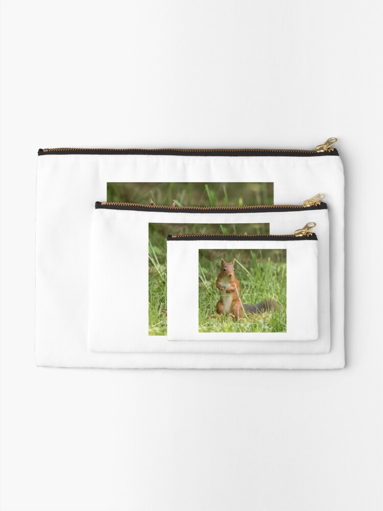 Alternate view of Squirrel in the grass Zipper Pouch