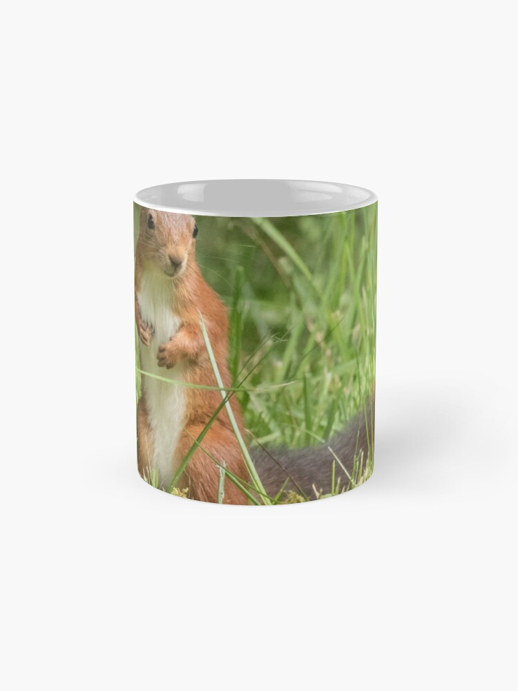 Alternate view of Squirrel in the grass Mug