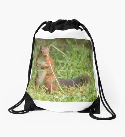 Squirrel in the grass Drawstring Bag