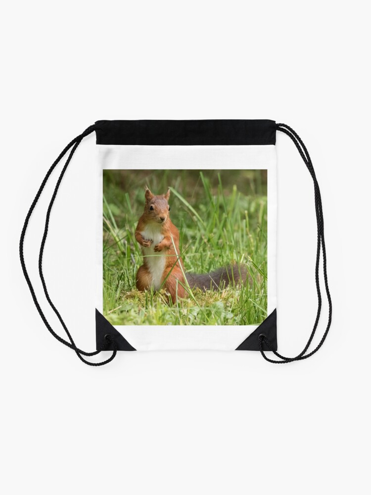 Alternate view of Squirrel in the grass Drawstring Bag