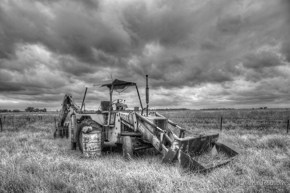 Out To Pasture by Leanne Robson