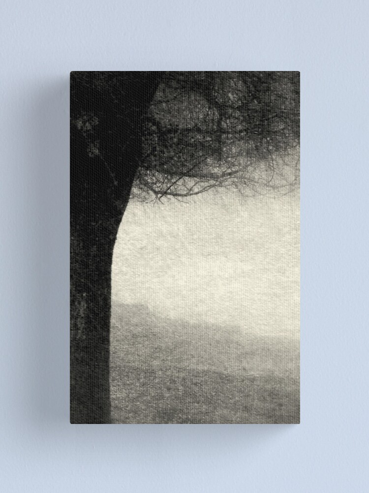 Alternate view of Shade Canvas Print