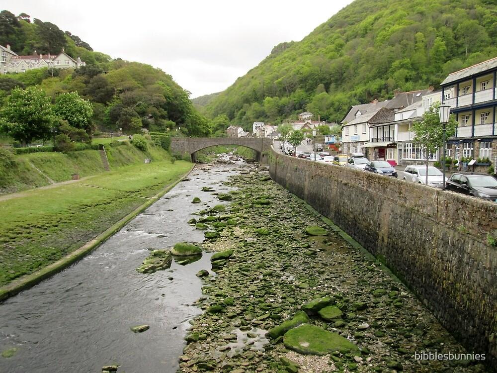 Exmoor river by bibblesbunnies