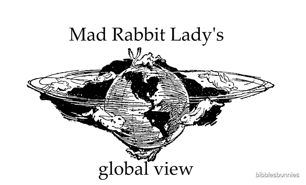 mad rabbit lady global view by bibblesbunnies