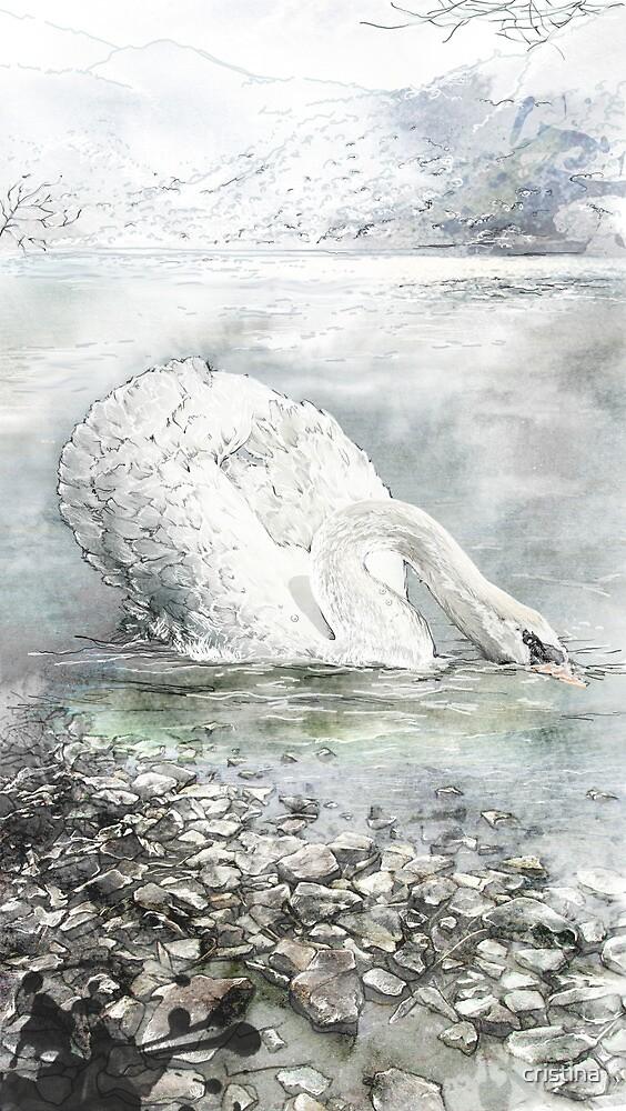 swan by cristina