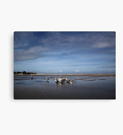 Pelican Beach Canvas Print
