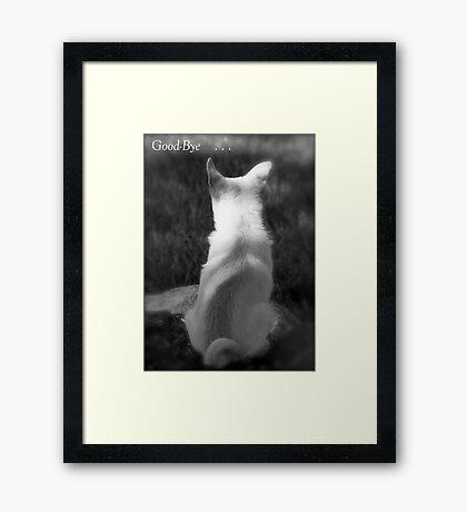 Loss of Pet Card Framed Print