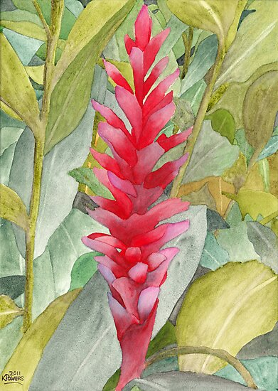 Hawaiian Beauty by Ken Powers