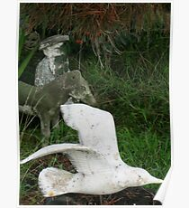 Floating concrete birdy  Poster