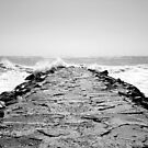Walking The Jetty by Sharon Woerner